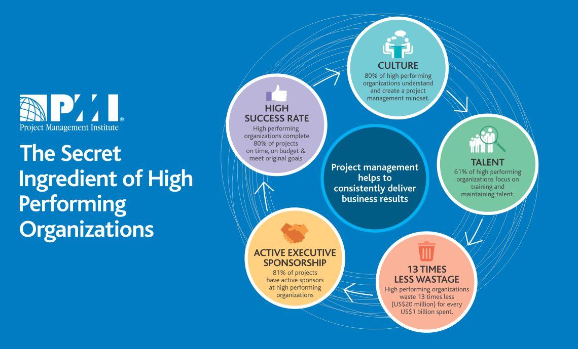 PMI India Infographic
